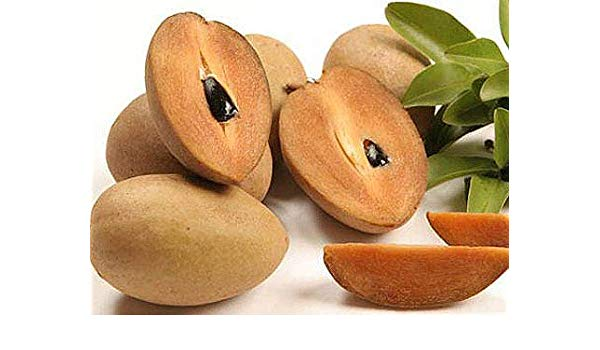 Amazing Benefits and Uses Of Sapota