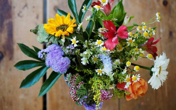 Why is it Important to Choose the Best Florist in Mumbai?