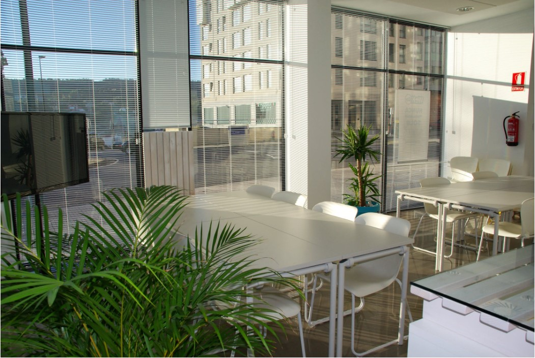 Venetian Blinds – For Converting the Atmosphere in the Room