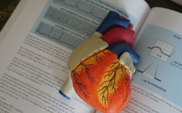 Tips for Writing the Best Medical Personal Statement
